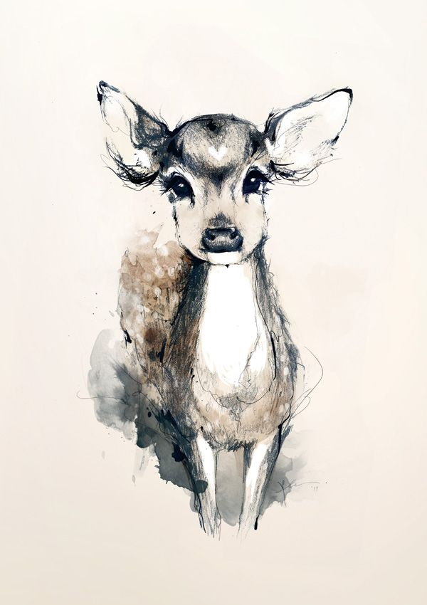 Tattooo Aquarelle Biche Drawings Art Dessin Dessin Et Art