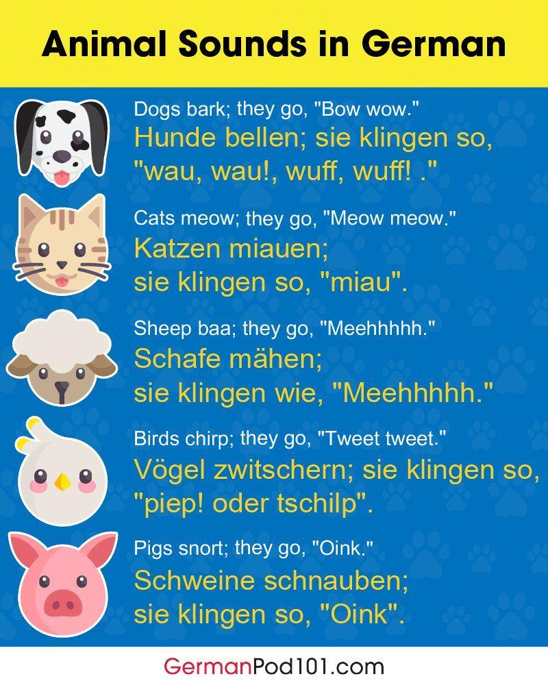 Pin By Steve Parker On Germany Animal Sounds Japanese Dogs