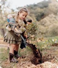 30 Desi Ways To Be Eco-Friendly Essay