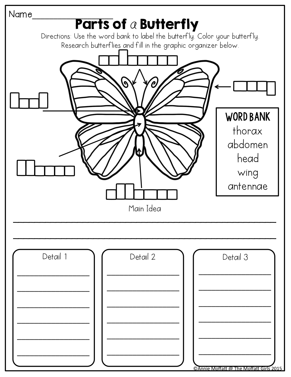 Butterfly Body Parts Worksheet Pictures To Pin On
