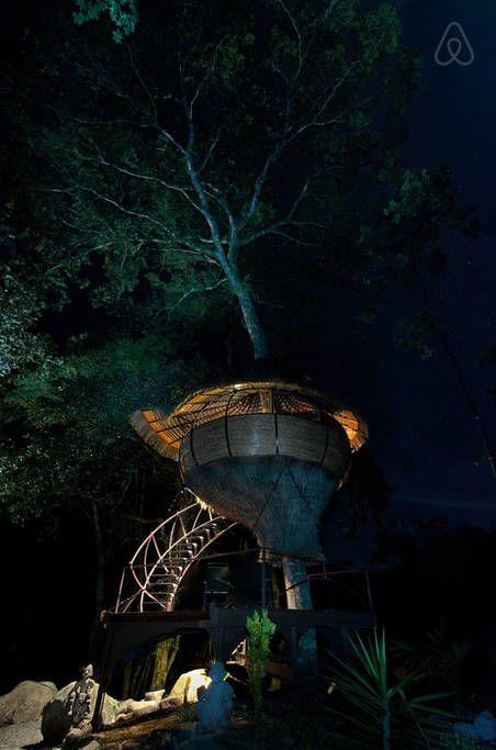 Amazing Treehouse Experience-Boquete, Chiriqui, Panama