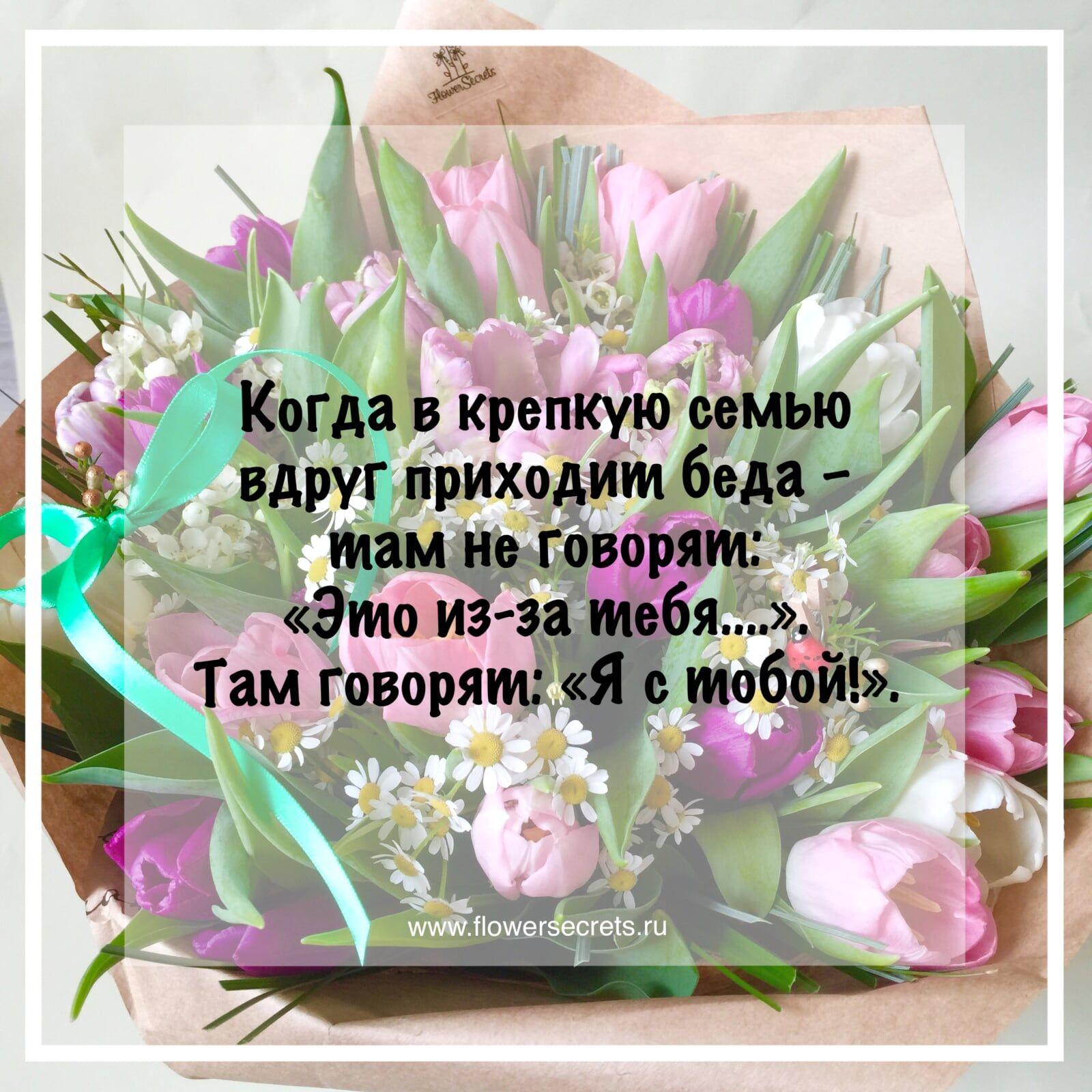Про цветок цитата