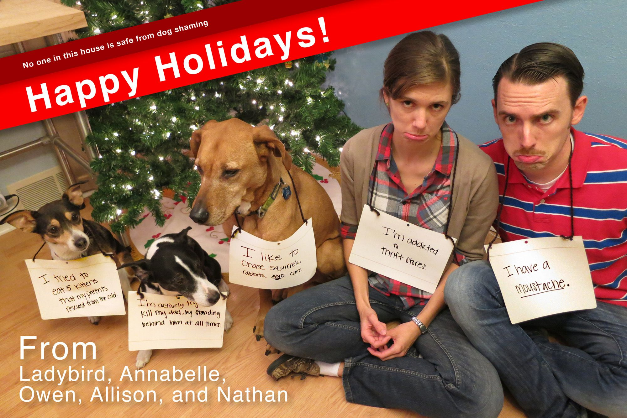 Dog shaming christmas card i love it pretty paper dog shaming christmas card i love it kristyandbryce Image collections