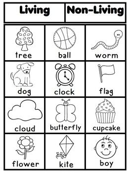 Living and nonliving living vs non living pinterest for Living and nonliving things coloring pages
