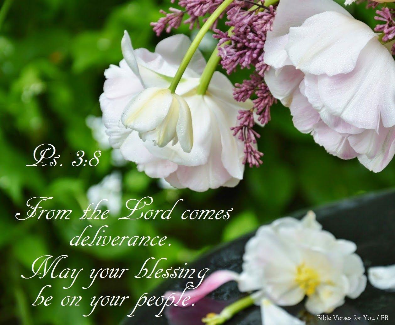 Pin on Precious Bible verses 1