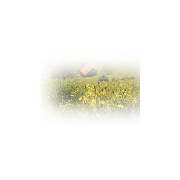 Epifanías Imagenes Editadas PNG ❤ liked on Polyvore