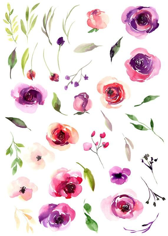 Watercolor Flowers Clipart Bright Violet Red Pink Roses Wedding