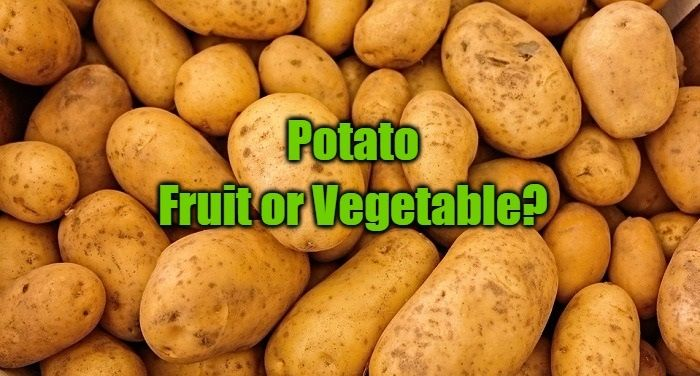 Is a Potato a Fruit or Vegetable? Find Your Answer Here!