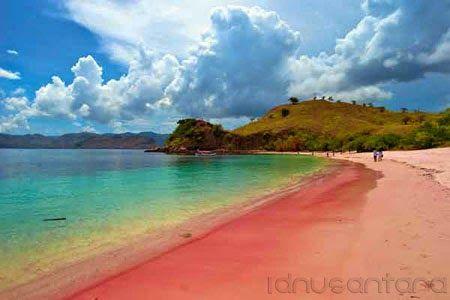 Wisata Pantai Pink Beach Flores