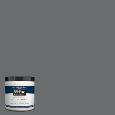 BEHR Premium Plus 8 oz. #770F-5 Dark Ash Interior/Exterior Paint ...
