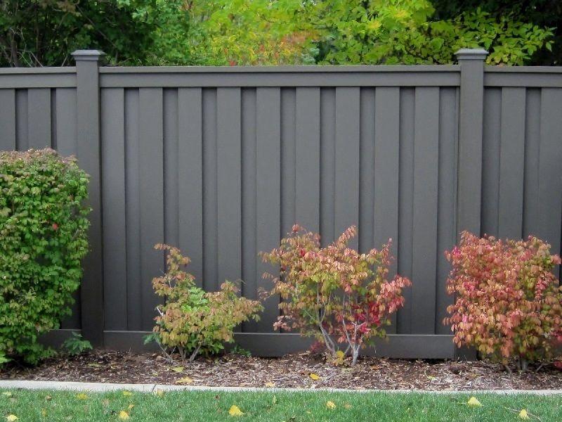 Fences, Backyard And