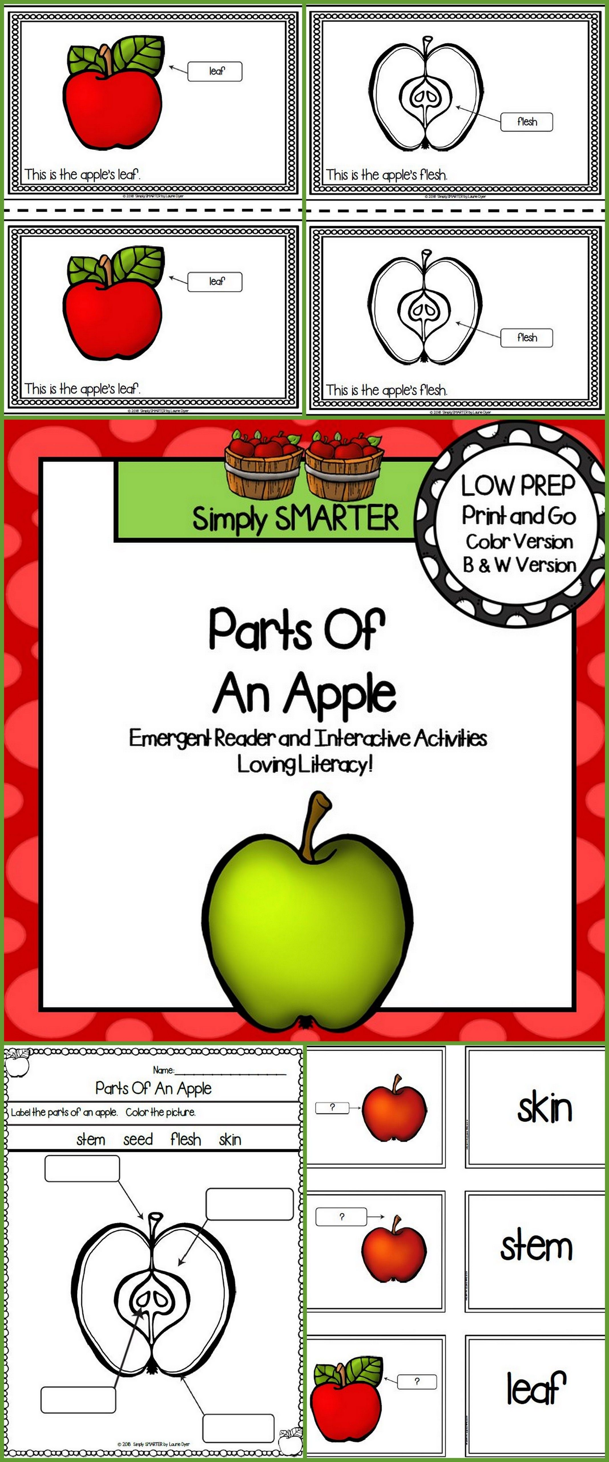 Parts Of An Apple Emergent Reader Book And Interactive