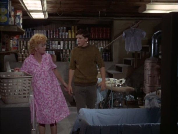 Yours Mine And Ours 1968 Lucille Ball and Tim Matheson