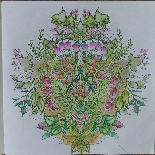 ENCHANTED FOREST By Brunelli Pens And Pencils Used Faber Castelli Johanna Basford