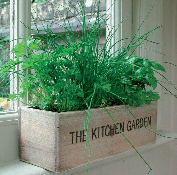 11 outstanding kitchen window herb garden foto design great room rh pinterest com au