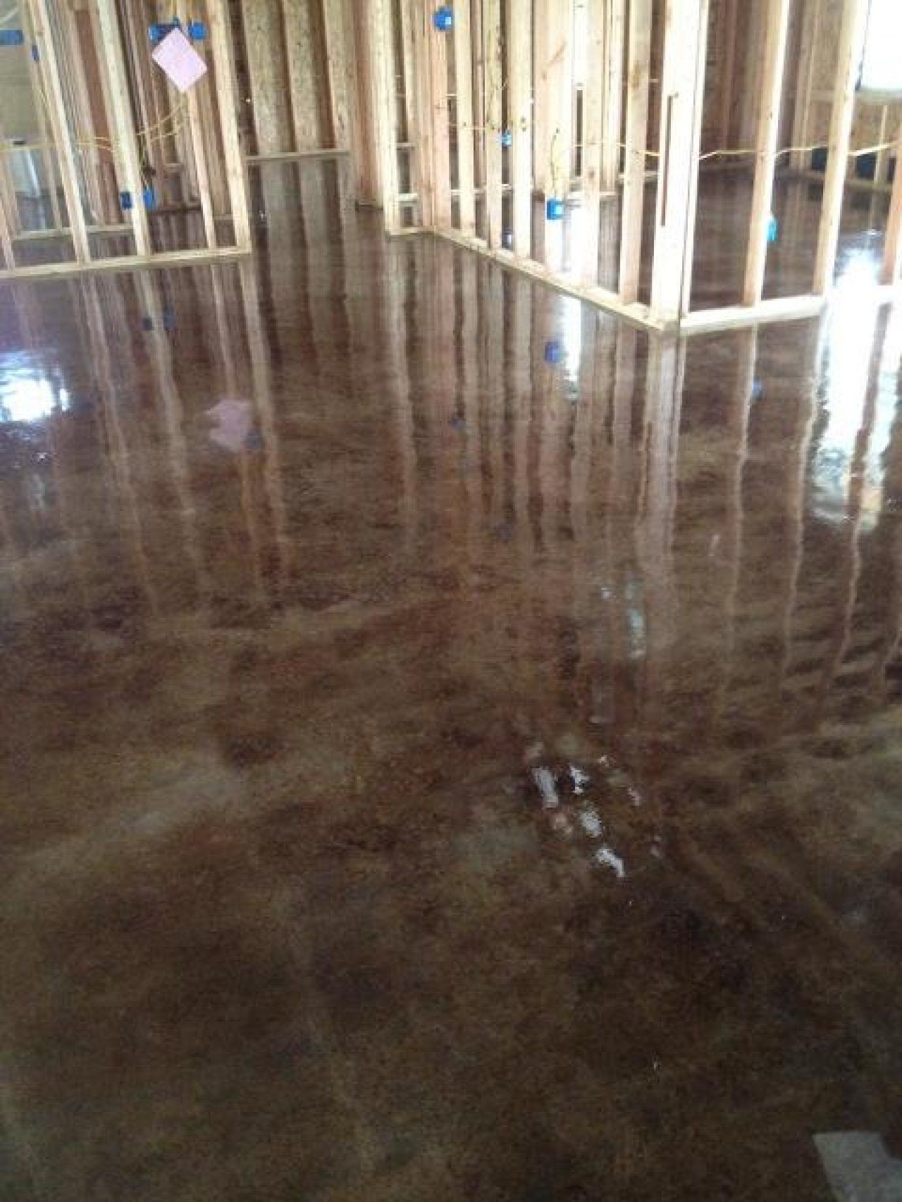 Pin On Flooring #stained #concrete #living #room