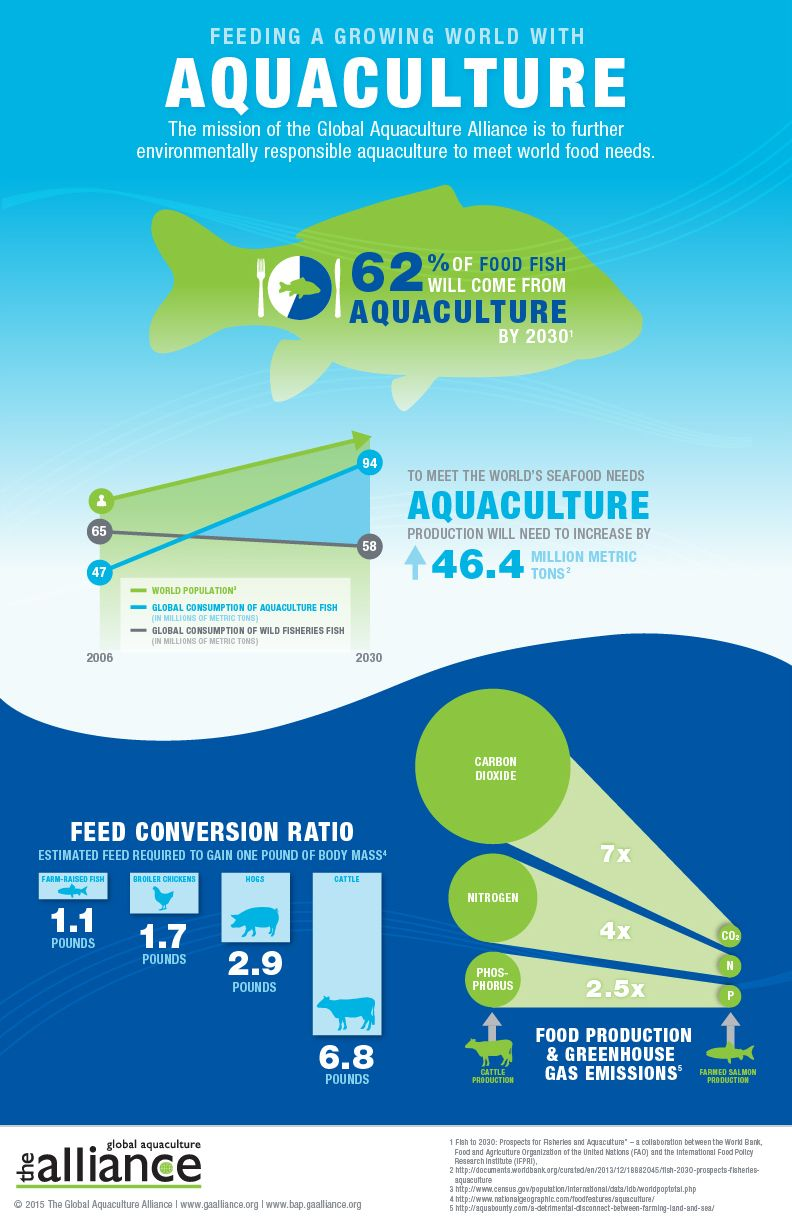 Global aquaculture alliance feeding a growing world with global aquaculture alliance feeding a growing world with aquaculture fandeluxe Image collections