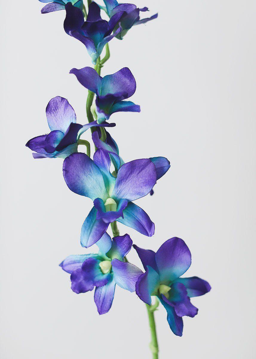 Blue Orchids Artificial Orchids Tropical Flowers Afloral Com Purple Orchids Purple Flower Tattoos Blue Flower Painting