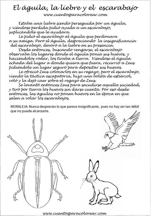 Fabulas Ilustradas El águila la liebre y el escarabajo | Fábulas y ...