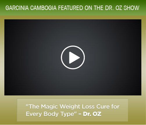FACTUAL STUDY: HYDROXYCITRIC ACID IN GARCINIA CAMBOGIA BURNS FAT