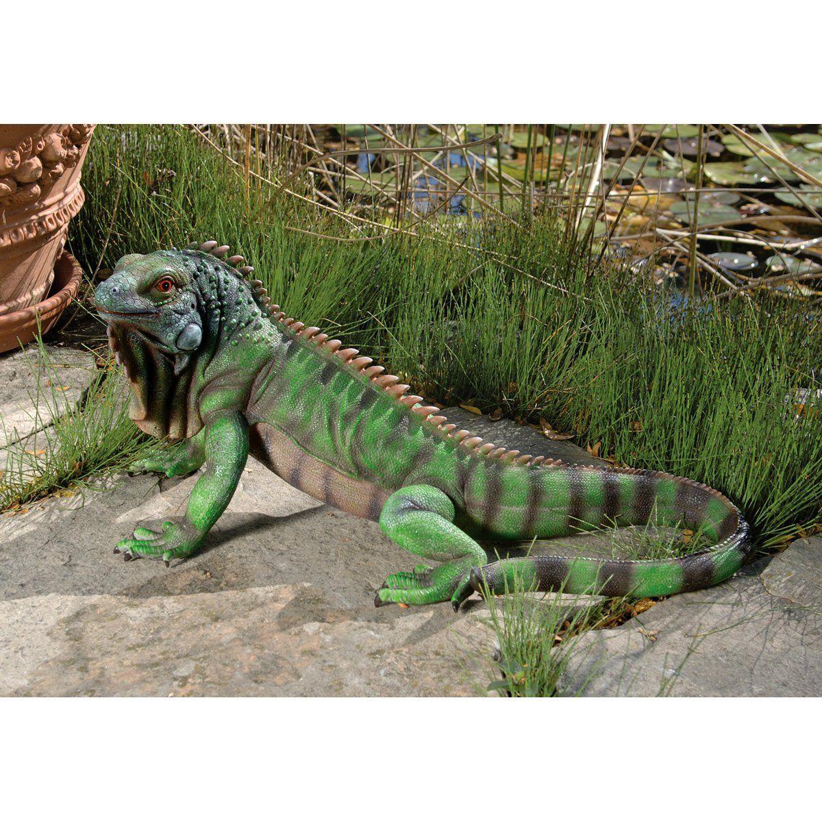 amazon com design toscano ne867207 giant iggy the iguana reptile