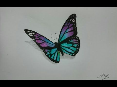 How To Draw A Realistic Butterfly With Colored Pencils Butterfly Drawing Flower Drawing Colorful Drawings