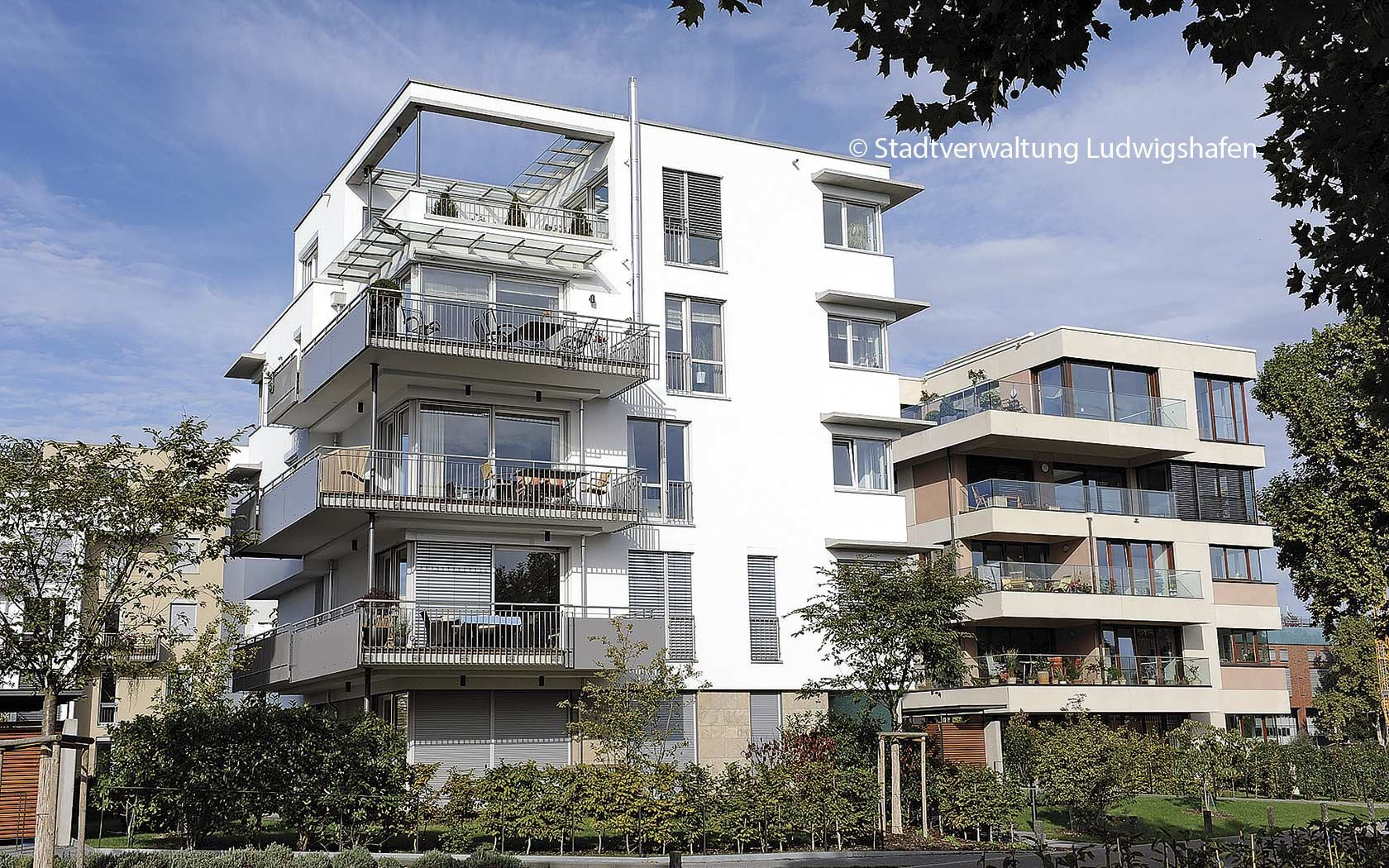 Dr. Eva Lohse Living and working in Ludwigshafen am Rhein