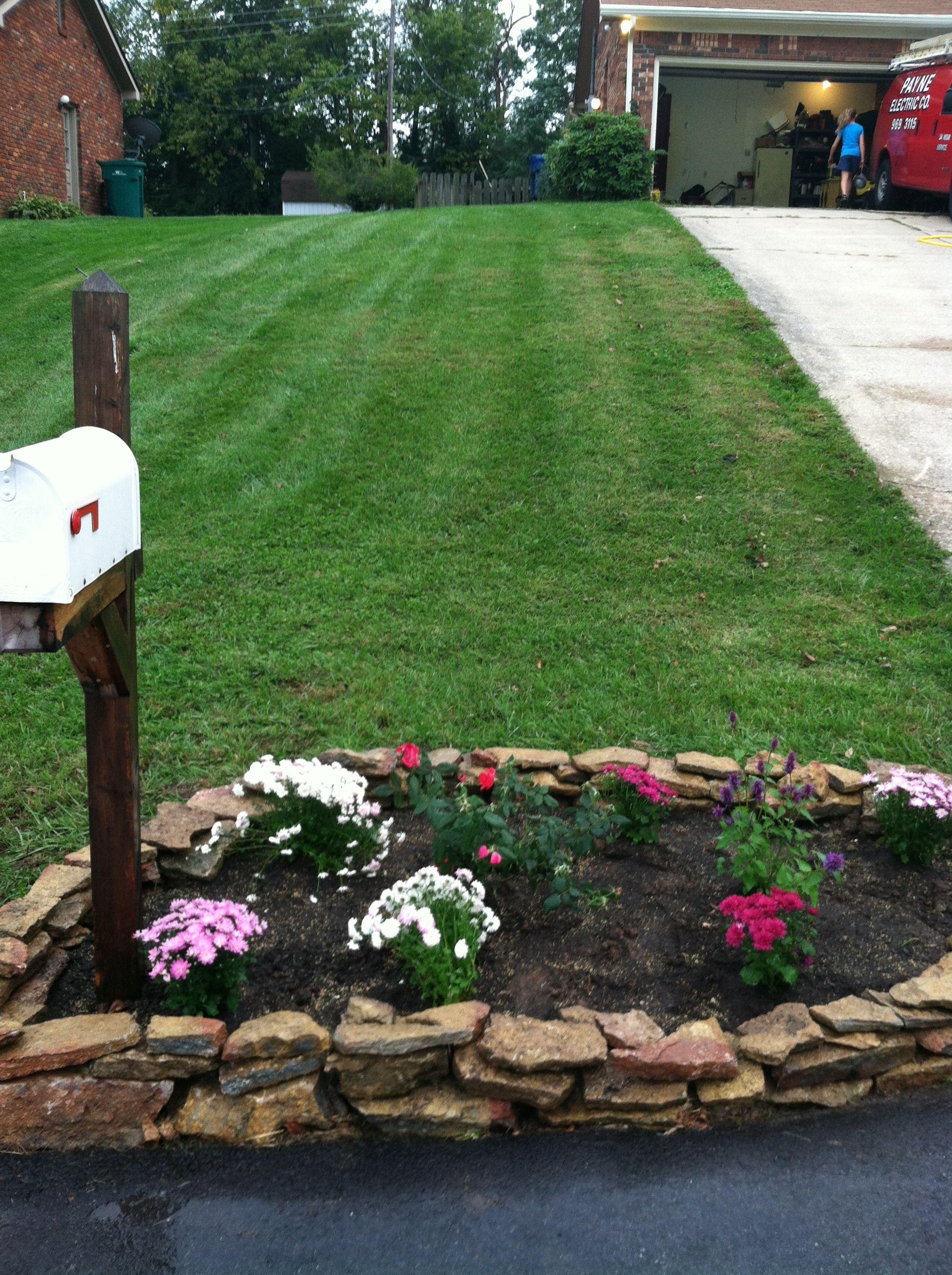 mums & rose garden mailbox
