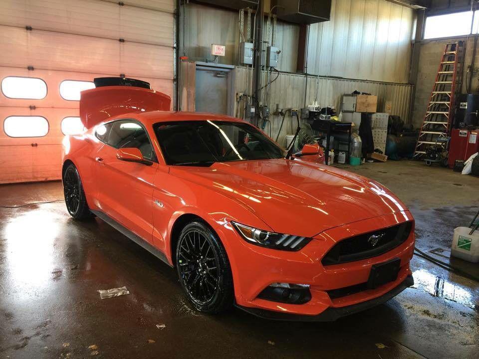 Orange 2015 Mustang >> 2015 Mustang Gt Competition Orange Mustangs Ford Mustang Gt