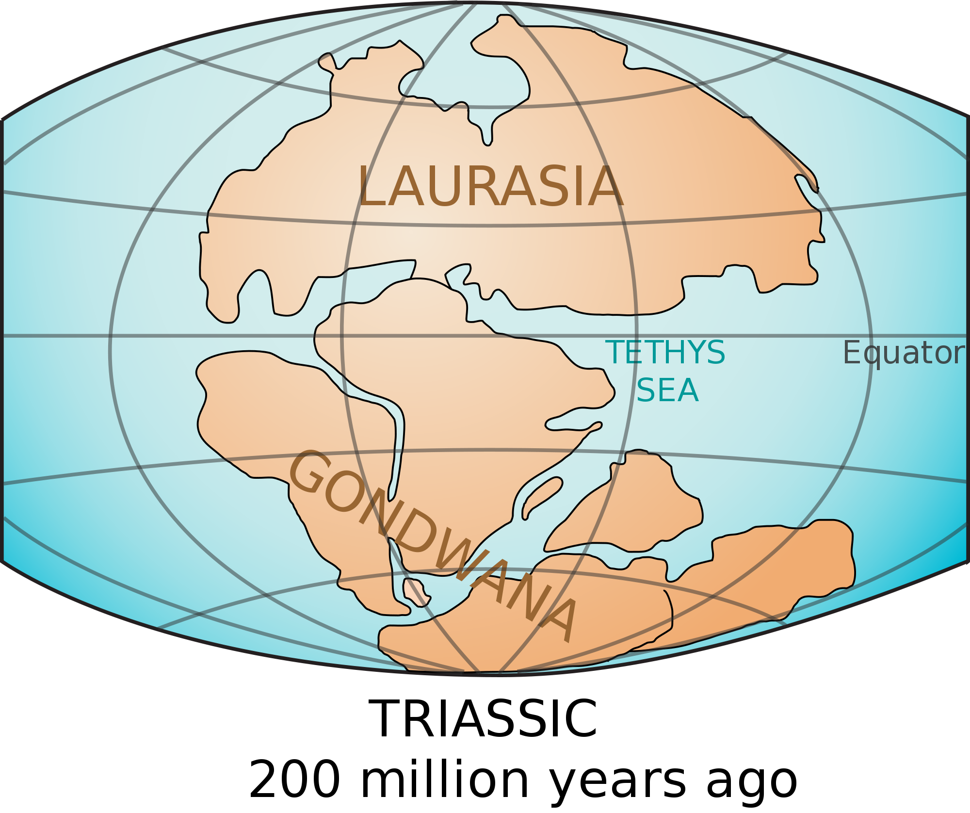 In the mid-triassic period, the super continent Pangea began to ...