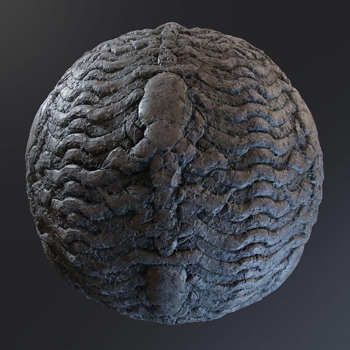 Substance Source Signature Material Release: Chris Hodgson