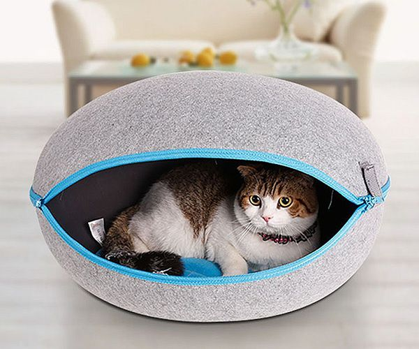 Egg Shape Cozy Caves For Cats Dogs Cool Sh T I Buy Heated Cat Bed Pet Kennels Luxury Pet Beds