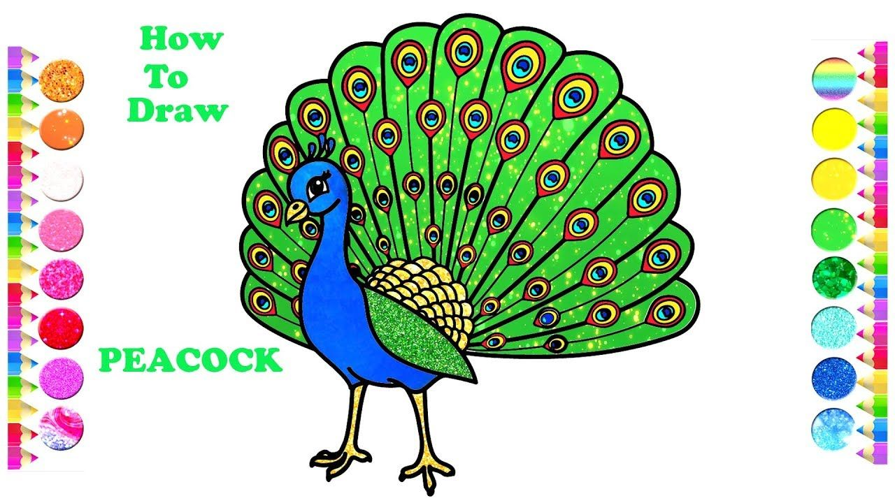 How To Draw A Peacock Easy Peacock Drawing And Coloring Pages Peacock Drawing Easy Drawings Coloring Pages