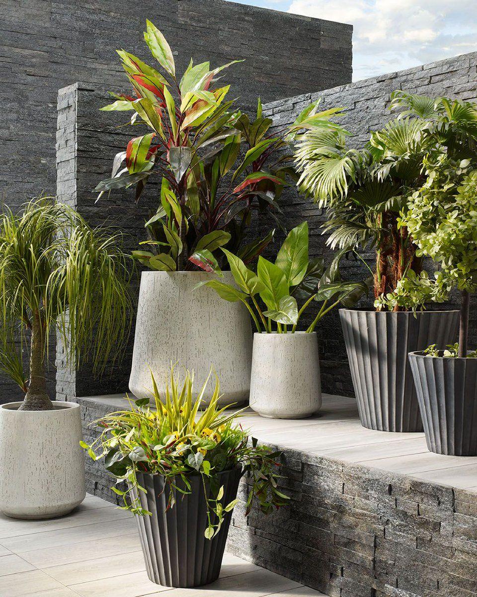 Abyat Ksa Abyatksa Twitter Outdoor Living Home And Garden Plants