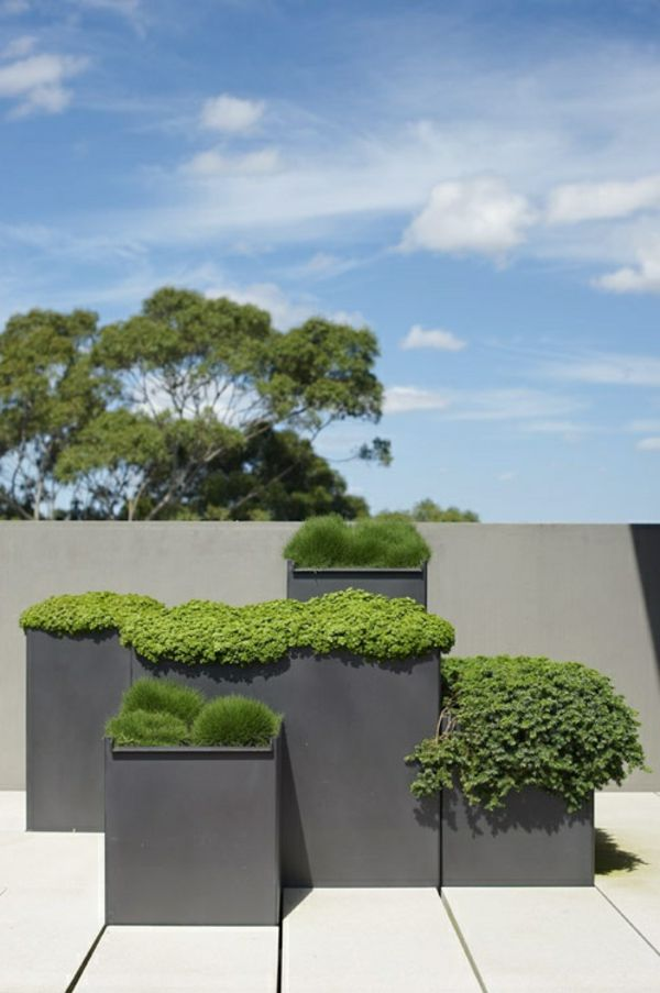 Photo of Terrace garden – wonderful design ideas! – Archzine.net