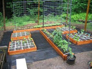 love this square foot garden design with the narrow plot for pole beans - Garden Design Long Narrow Plot