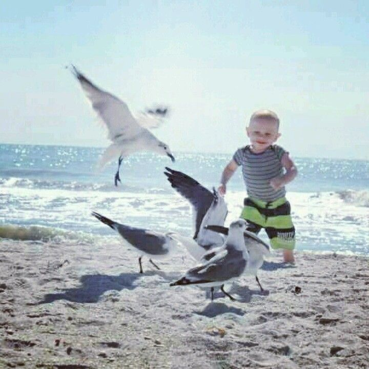 My beautiful son chasing after birds on the beach