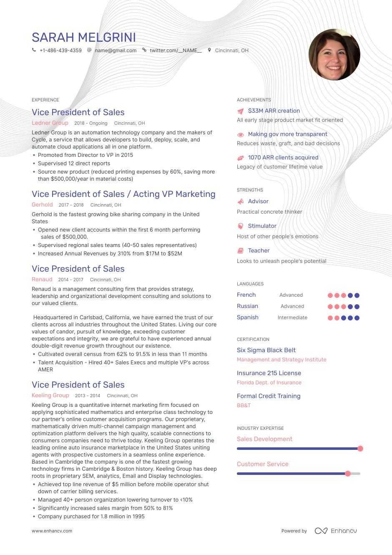 VP of Sales Resume Example in 2020 Sales resume, Sales