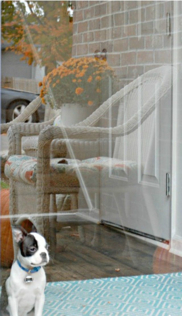 How To Clean Your Windows Without Streaks Cleaning Cleaning Window Cleaner Cleaning Hacks