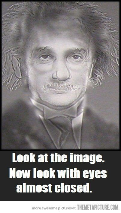 Albert Einstein Or Harry Potter Opticalillusion Optometry Resa