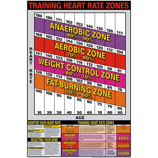 Training Heart Rate Zones Chart ~ Charts/Posters | Motivation