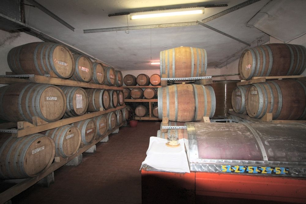 Oak Barrel Storage in Old Cantina