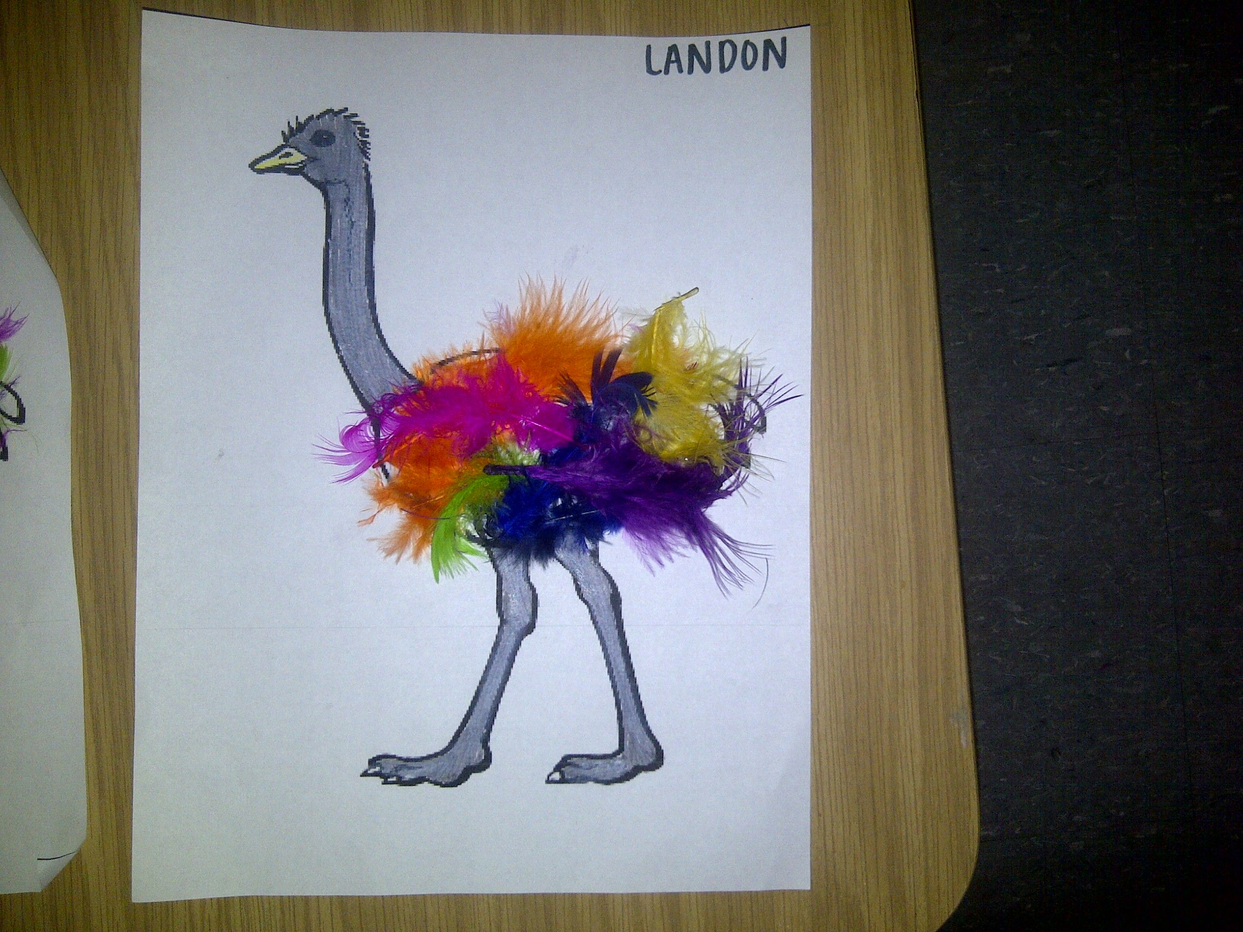 First Grade Art Projects Ostrich Head And Neck