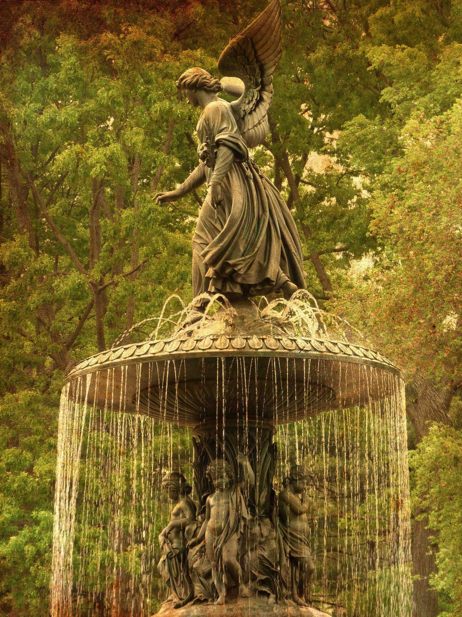 central park | Central park, Park and Explore