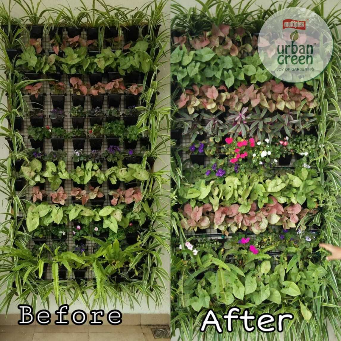 A simple way to grow more plants around us! Vertical