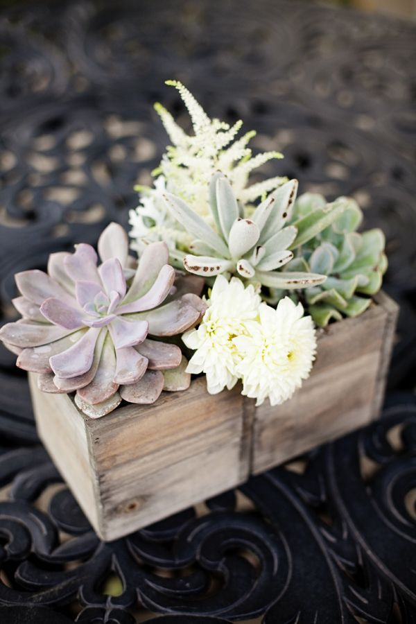 Succulents In Wooden Box With A Few Blooms Tucked In For Centerpieces.  Yours Would Be Larger, Square Wooden Boxes.