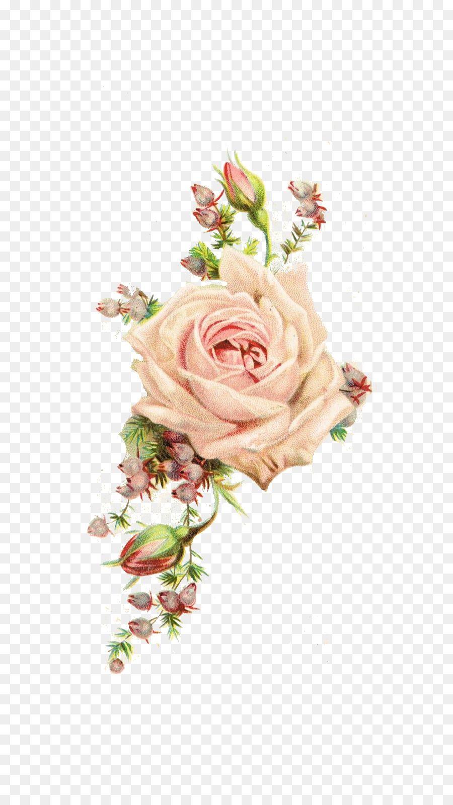Paper Rose Antique Flower Vintage Clothing Vintage Flowers Flower Drawing Flower Png Images Flower Border Png
