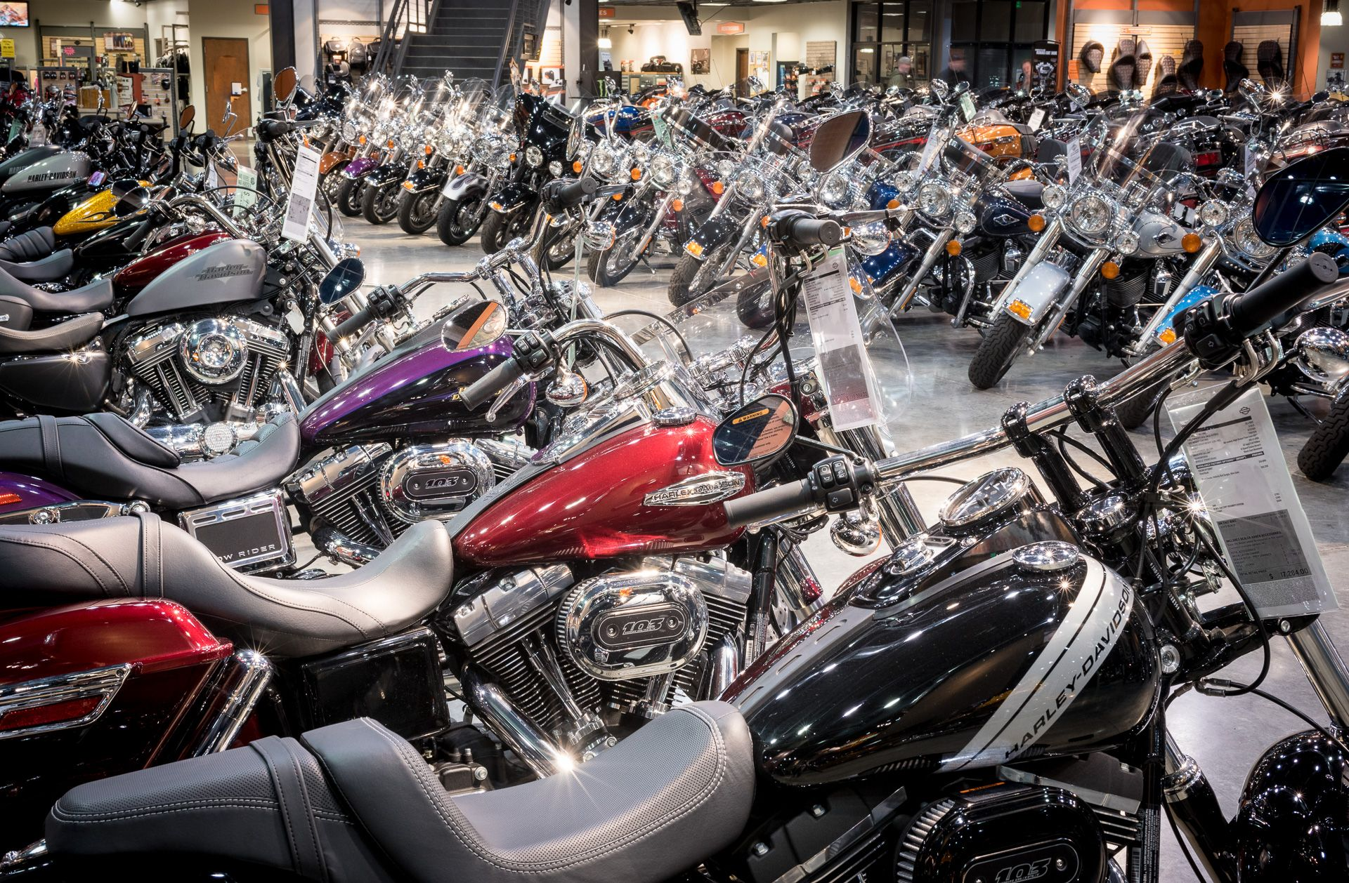 Pin By Lawless Harley Davidson On All Things Harley