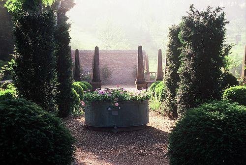 Hanham Court South Glos Landscape Design Desert Gardening Landscaping Hydrangea Garden