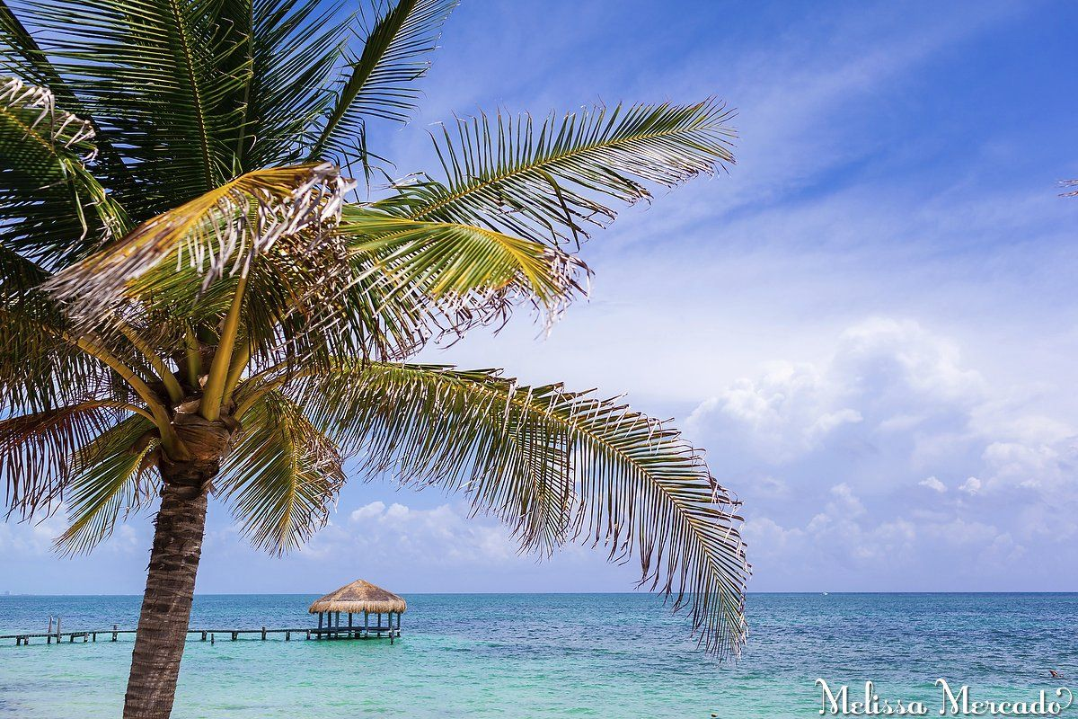 Azul Beach Hotel & Resort, Playa del Carmen, Cancun, Caribbean Sea, Family-friendly, boutique style all-inclusive melissa-mercado.com
